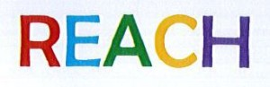 REACH Short logo